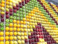 fruitmosaic18