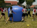 pushball-obstacle13