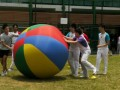 pushball-obstacle15