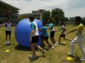 pushball-obstacle20