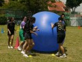 pushball-obstacle3