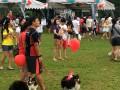 20170708 Longest Dogwalk Line@SHF bishan park (1)