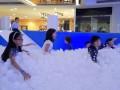 I12 largest ball pool (15)