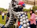 balloonbyindividual13