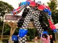 balloonbyindividual30