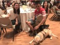 Largest Blindfolded Dining (2)
