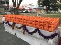 largest display of halloween lanterns (1)