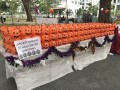 largest display of halloween lanterns (3)