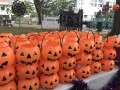 largest display of halloween lanterns (4)