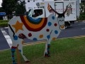 cow-display9