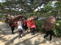 Largest Mass Walk With Umbrellas (21)