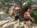 Largest Mass Walk With Umbrellas (22)