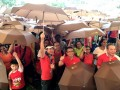 Largest Mass Walk With Umbrellas (5)