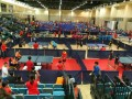 tabletennisleague13