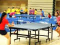 tabletennisleague15