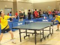 tabletennisleague16