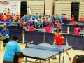 tabletennisleague2