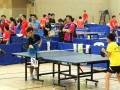 tabletennisleague24