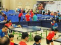 tabletennisleague3