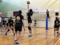 volleyball-shuqun20