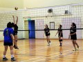 volleyball-shuqun29