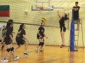 volleyball-shuqun39