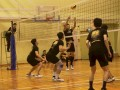 volleyball-shuqun57