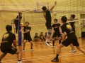 volleyball-shuqun58
