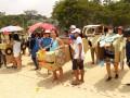 cardboardboxcar16
