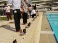Longest Underwater Robot