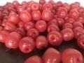 apple balloons_30mins (8)