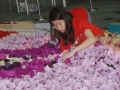 Largest Singapore Map Made Of Latex Flowers