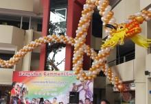 Longest Balloon Sculpture