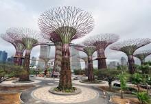 Largest Garden