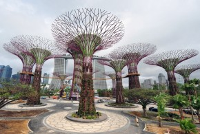 World's Largest Climate-Controlled Conservatories