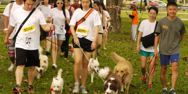 Largest Dog Jog