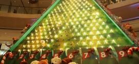 Largest Galton Christmas Tree