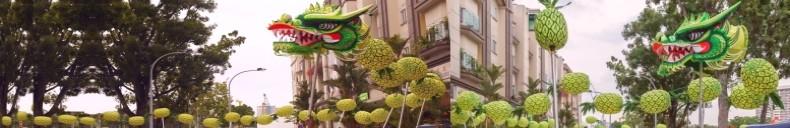 cny-dragon-pineapple