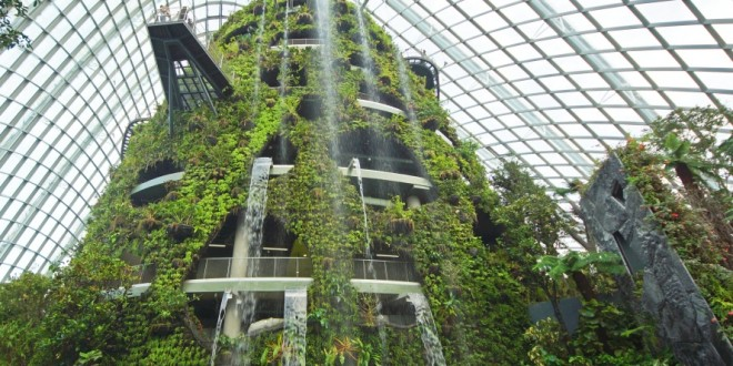 World's Tallest Indoor Waterfall