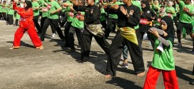 Largest Mass Silat Display
