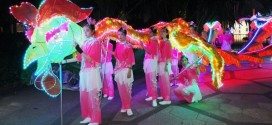 Largest Phoenix Dance Display