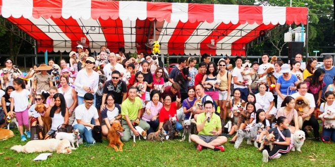 Largest Gathering Of Most Dog Breeds