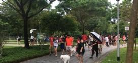 Longest Dog Walk Line
