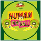 Zespri Largest Human Pinball Game