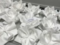 Largest Display of Folded Napkins19