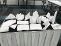 Largest Display of Folded Napkins24