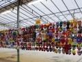 Largest Display Of Masks