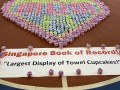 largest display of cupcake towels (1)