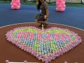 largest display of cupcake towels (3)