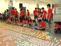 Largest Display Of Paper Lions